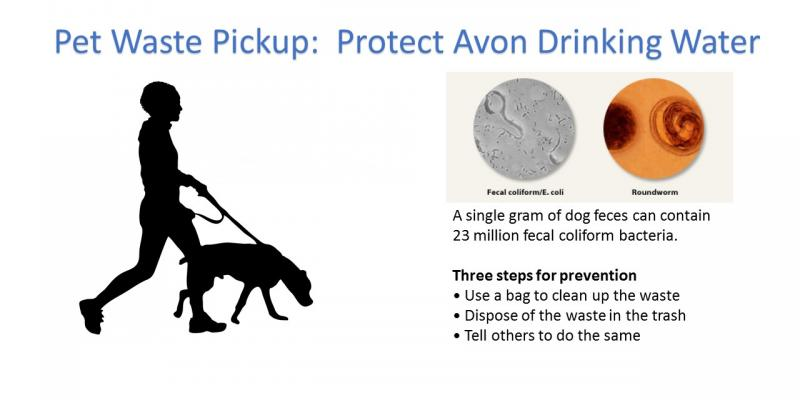 Image of dog walker and information about dog waste and your drinking water