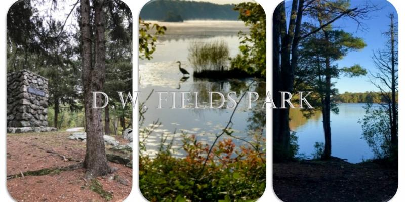 D. W. Feild Park 1