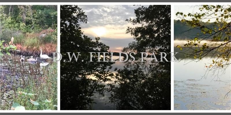 D. W. FEILDS PARK 2